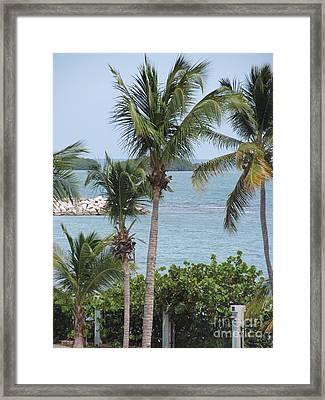 Puerto Rico IIi Framed Print
