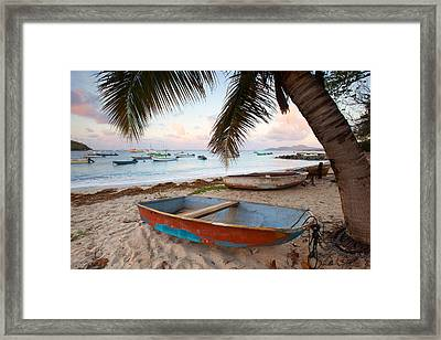 Puerto Rico Morning Framed Print by Patrick Downey