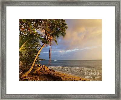 Puerto Rico Palm Lined Beach With Boat At Sunset Framed Print by Jo Ann Tomaselli