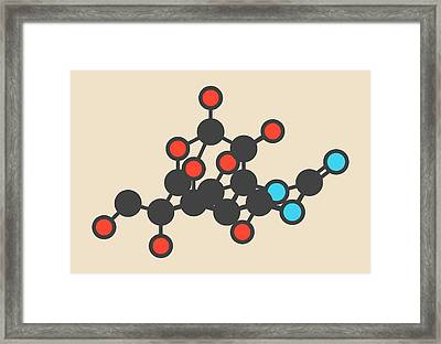 Pufferfish Neurotoxin Molecule Framed Print by Molekuul
