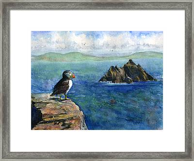 Puffin At Skellig Island Ireland Framed Print