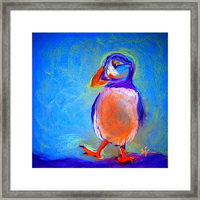 Funky Puffin Dancing Framed Print by Sue Jacobi