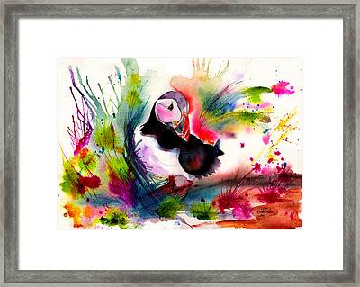 Puffin Framed Print by Isabel Salvador