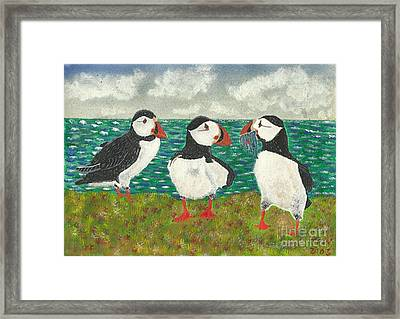 Puffin Island Framed Print by John Williams