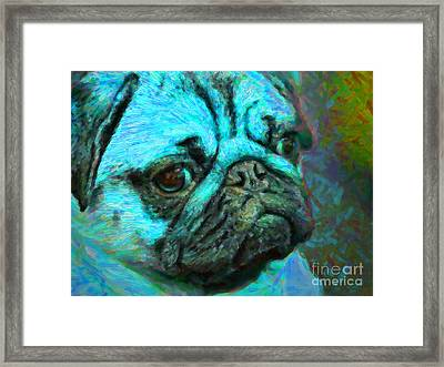 Pug 20130126v5 Framed Print by Wingsdomain Art and Photography