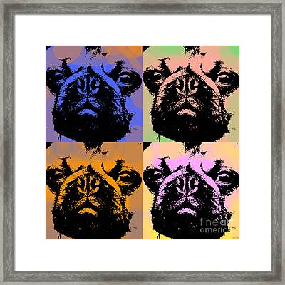 Pug Pop Art Framed Print by Jean luc Comperat