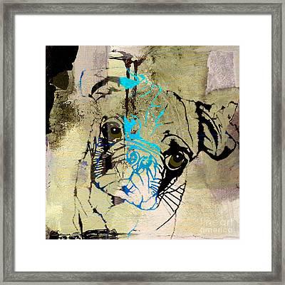 Pug Framed Print by Marvin Blaine