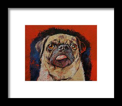 Hund Framed Prints