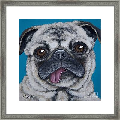 Pug Portrait Framed Print
