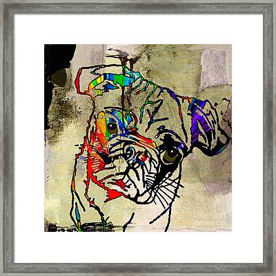 Pug Smug Framed Print