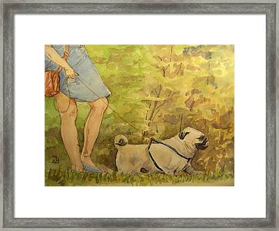 Pug Walkign Framed Print by Juan  Bosco
