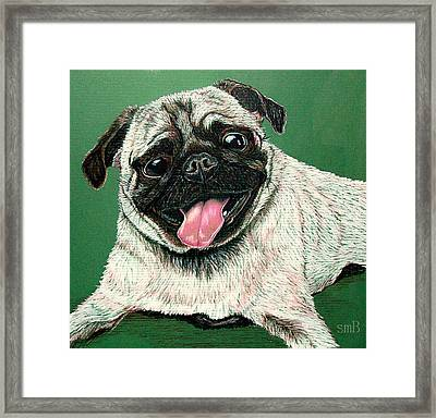 Pugs And Kisses Framed Print by Susan Bergstrom