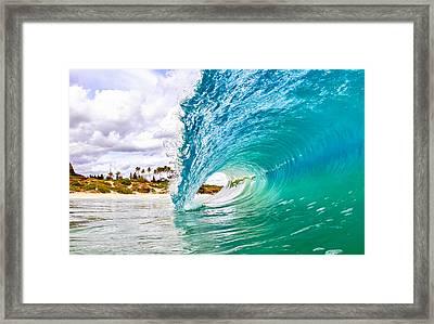Puka Framed Print by Gregg  Daniels