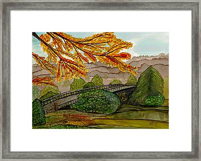 Pullen Park Perspectives Framed Print