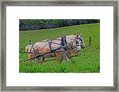 Pulling Their Weight Framed Print