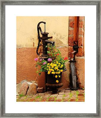 Pump And Flowers In Kaysersberg France Framed Print by Greg Matchick