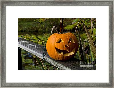 Pumpkin By The Pond Framed Print by Maria Janicki