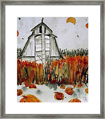 Pumpkin Dreams Framed Print by Dawn Derman