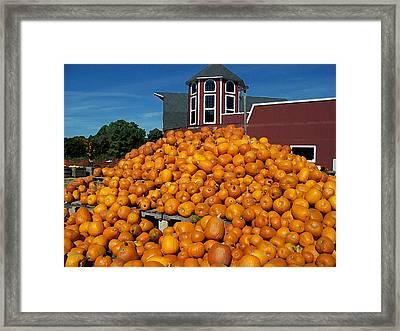 Pumpkin Heaven Framed Print