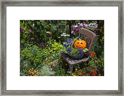 Pumpkin In Basket On Chair Framed Print by Garry Gay