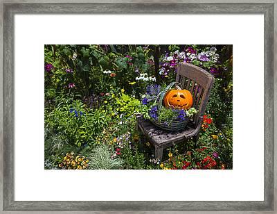 Pumpkin In Basket On Chair Framed Print