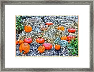 Pumpkin Land Framed Print by Sonali Gangane