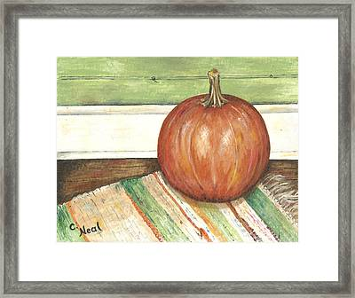 Pumpkin On A Rag Rug Framed Print