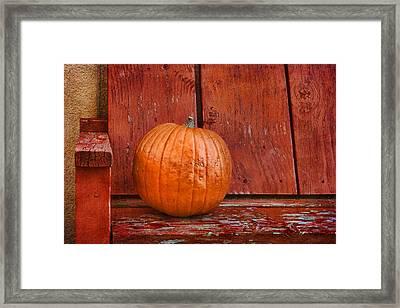 Pumpkin On Bench #2 - Southwestern Still Life Framed Print by Nikolyn McDonald
