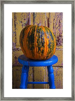 Pumpkin On Blue Stool Framed Print