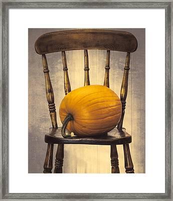 Pumpkin On Chair Framed Print by Amanda Elwell