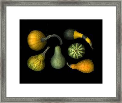 Pumpkin Patch Framed Print by Christian Slanec