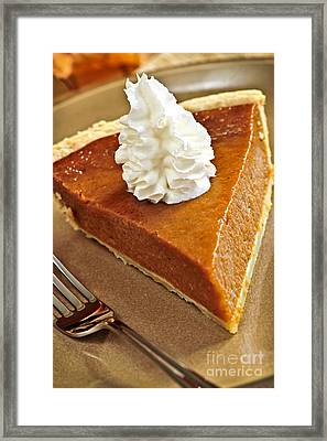 Pumpkin Pie Framed Print by Elena Elisseeva