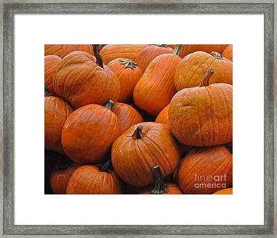 Framed Print featuring the photograph Pumpkin Pile by Tikvah's Hope