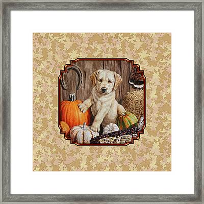 Pumpkin Puppy Leafy Background Framed Print by Crista Forest