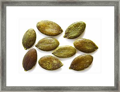 Framed Print featuring the photograph Pumpkin Seeds by Craig B