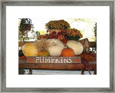 Pumpkin Welcome  Framed Print by Barbara McDevitt