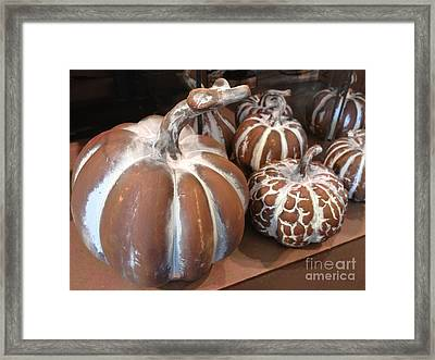 Pumpkins And Gourds Fall Autumn Brown White Pumpkins - Colors Of Autumn Framed Print by Kathy Fornal
