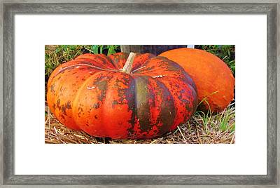 Framed Print featuring the photograph Pumpkins by Cynthia Guinn