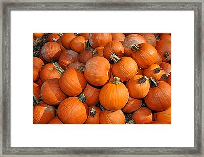 Framed Print featuring the photograph Pumpkins by Diane Lent