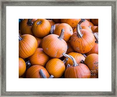 Pumpkins Framed Print by Edward Fielding