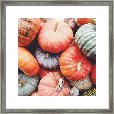 Pumpkins Galore Framed Print by Kim Fearheiley