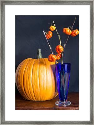 Pumpkins Framed Print by Heidi Smith