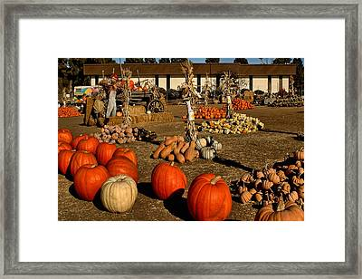 Framed Print featuring the photograph Pumpkins by Michael Gordon