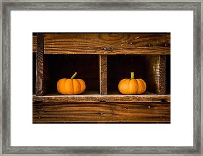 Pumpkins On Display Framed Print by Dawn Romine