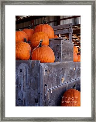 Pumpkins On The Wagon Framed Print by Kerri Mortenson