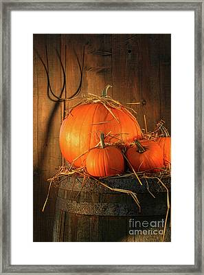 Pumpkins On Wine Barrel  Framed Print by Sandra Cunningham