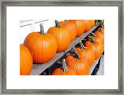 Pumpkins Framed Print by Valentino Visentini