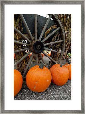 Pumpkins With Old Wagon Framed Print