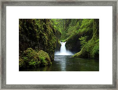 Punch Bowl Waterfall, Eagle Creek Framed Print by Art Wolfe