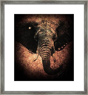 Punkphant Framed Print by Elena Mussi